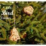 diy bird feeders {+ 16 more indoor projects for the kids}