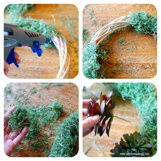 succulent-wreath2