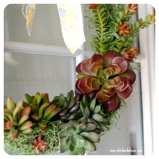 succulent-wreath6