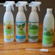 Spring Cleaning {GIVEAWAY}