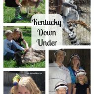 Kentucky Down Under Adventure Zoo