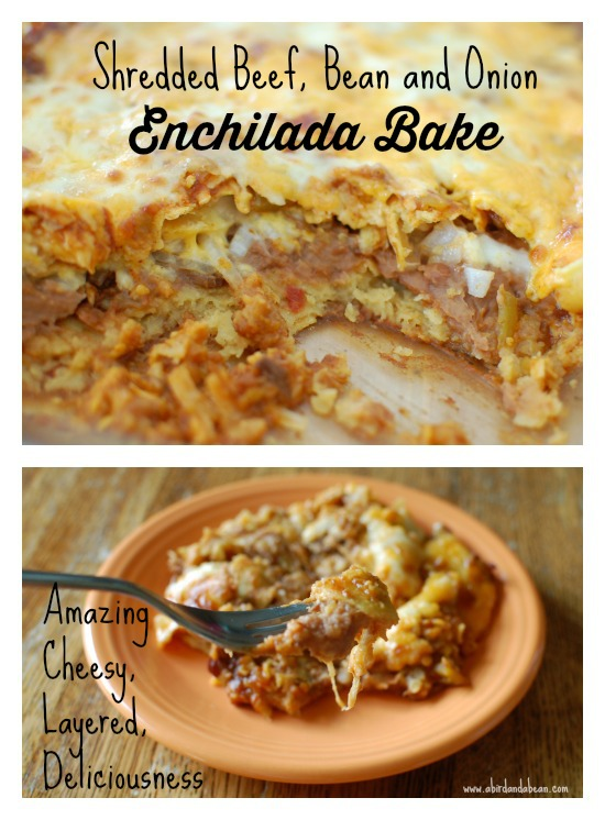 Shredded Beef, Bean and Onion Enchilada Bake - A Bird and a Bean