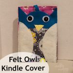 Felt Owl Cover for the Kindle