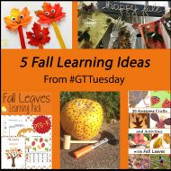 5 Learning Ideas for Fall