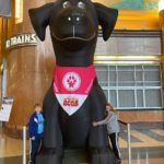Superpower Dogs at the Cincy Museum Center
