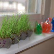grass-a-pillar