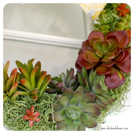 succulent-wreath8