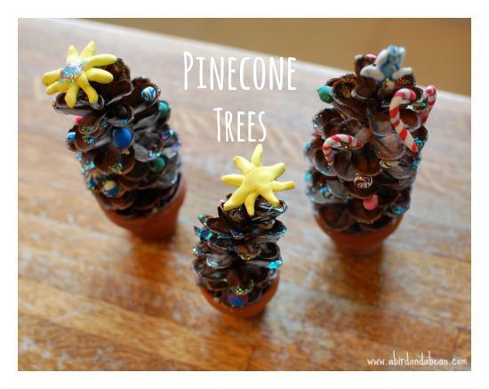 pineconetree3