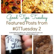 Good Tips Tuesday 1/20
