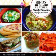 Our Family Favorite Recipes e-book