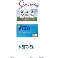 $20 Winner's Choice Gift Card {Giveaway}