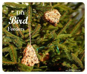 birdfeeders7