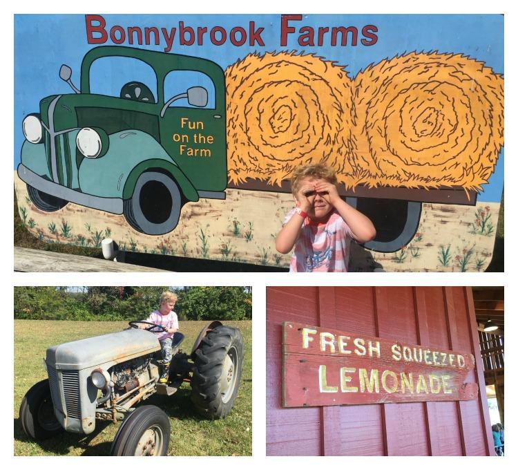 bonnybrook8