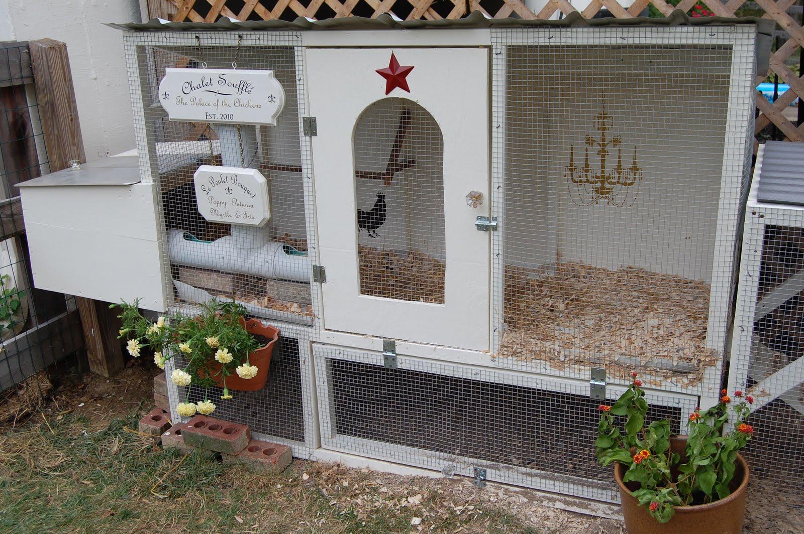Fancy Chicken House A Bird And A Bean